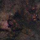 The Star Clouds of Cygnus,                                Alex Roberts