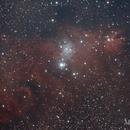 NGC 2264 Cone Nebula,                                diurnal