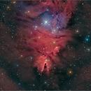 NGC2264 (The Cone Nebula),                                Randal Healey
