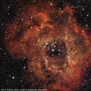 Rosette nebula,                                Ron Kramer