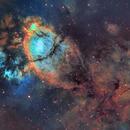 Fishhead Nebula (NGC 896, IC 1795),                                Gary Lopez