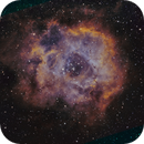 Rosette Nebula in SHO Hubble Palette  NGC 2237,                                Berry