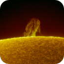 Quiescent prominence - 07.02.2020,                                Łukasz Sujka