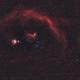 Orion-Barnard's Loop HaHaGB (2020),                                Kurt Zeppetello