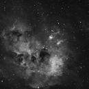 IC410 - The Tadpole Nebula,                                Brendan