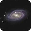 Zoom in M109,                                AstronoSeb