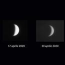 Le fasi di Venere,                                Giuseppe Nicosia