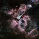 Eta Carina Nebula 2x3 Mosaic,                                Wayne Stronach