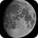 Halloween Moon,                                Peter Komatović