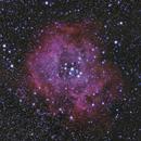 Rosette Nebula - RGB,                                TomBramwell