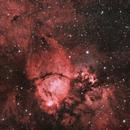 Fish Head Nebula,                                Matthew Enrietta