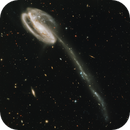 Merge and Processing of Hubble's shots of the Tadpole Galaxy,                                Benoit Blanco