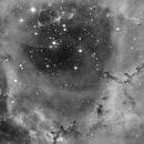 NGC 2244 - Rosettennebel,                                Karl/Daniel Kohl