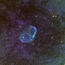 NGC6888 art,                                Greg Watkins