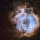 Rosette Nebula Narrowband,                                llolson1