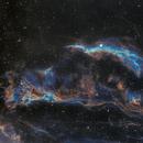 IC6960 HOO with OSC LeXetreme,                                John Favalessa
