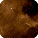 North America Nebula,                                Petri Kiukas