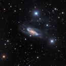NGC 3981,                                Warren A. Keller