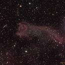 Cometary Globule 4 (CG4) (Hand of God Nebula) [RGB],                                Dean Carr