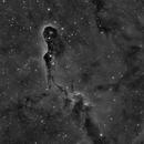 IC1396,                                Ian Aiken