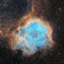 Rosette, Cone nebula and Christmas Tree SHO,                                Guillaume-Arnaud