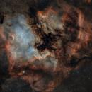 North America Nebula_NGC7000,                                photoman888