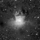NGC7023,                                Juan José Picón