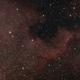 NGC7000 North America Nebula,                                Mathias Radl
