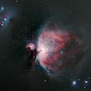 Orion Nebula - M42,                                ReneW