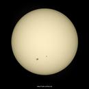 Sonnenflecken / Sun Spots - 20201127,                                firstLight