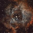 NGC2239 - Narrow Band - Cannistra Method,                                Fabio Mortari - Rimini