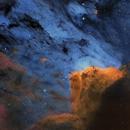 IC5070 (The Pelican Nebula),                                Randal Healey
