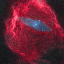 Sh2-129 (flying Bat Nebula), Ou4 (Squid Nebula),                                Mario Zauner