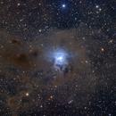 NGC 7023 - Iris Nebula,                                starfield
