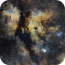The Butterfly Nebula, IC 1318,                                Marek Koenig