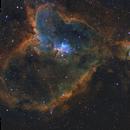 Heart Nebula SHO,                                Dan Pelzel