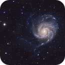 M101 o NGC5457,                                Andrea Marinelli