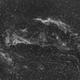 NGC 6960 in Ha,                                Terry