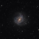 Quick peek at M83,                                Mauricio Christiano de Souza