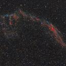 NGC 6992 Eastern Veil,                                Steve Gallenson
