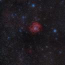 Rosette Nebula through the mist,                                Nic Doebelin