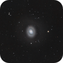 M94 rings galaxy,                                John Favalessa