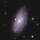 NGC 3953,                                Frank Colosimo