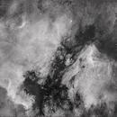 Dark Nebula before NGC 7000 and IC5070,                                Yabu Gaillé