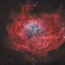 Lower's Nebula,                                pete_xl