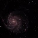 M101,                                MattT