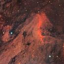 Pelican Nebula (IC 5070, LRGB),                                Henning Schmidt