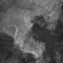 NGC7000 HA,                                Vincent