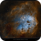 IC410 (Tadpoles) in Narrow Band,                                Mike Oates