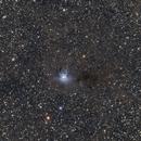 Iris Nebula - Full Dusty Dreamy Widefield NGC7023,                                Jocelyn Podmilsak